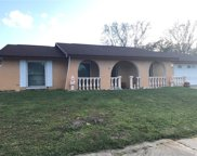 4214 Hollow Hill Drive, Tampa image
