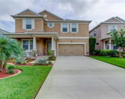 119 Philippe Grand Court, Safety Harbor image