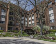 448 Raintree Court Unit 5P, Glen Ellyn image