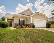 710  Ivy Trail Way, Fort Mill image