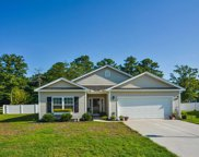 336 Pickney Ct., Conway image