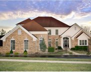 13549 River Forest, St Louis image