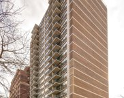 2740 North Pine Grove Avenue Unit 4G, Chicago image