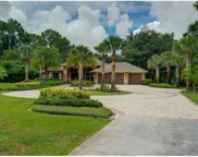 6290 Cedar Tree Ln, Naples image