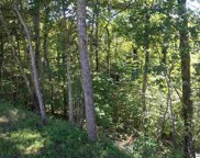 Lot 38 Longspur Trail, Sevierville image