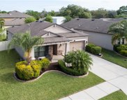 11502 Scarlet Ibis Place, Riverview image