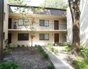 11706 Raintree Village Boulevard Unit D, Temple Terrace image