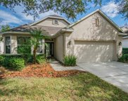 10232 Evergreen Hill Drive, Tampa image