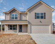 4608 Springstead Trail, Antioch image