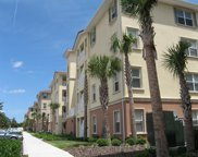 200 Canopy Walk Lane Unit 244, Palm Coast image
