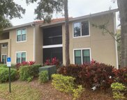 4065 Crockers Lake Boulevard Unit 27, Palmer Ranch image
