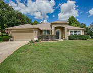 11421 Lake Tree Court, Clermont image