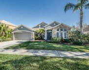 1436 Tawnyberry Court, Trinity image