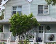 58 Merganser, Key West image