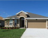 James Court, Poinciana image