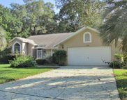 19075 SW 92nd Loop, Dunnellon image