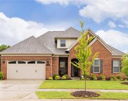 12726  Rusty Blackbird Way, Charlotte image
