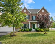 42229 Palm Cove Ct  Court, Chantilly image