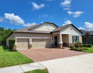 31427 Driscoll Drive, Wesley Chapel image