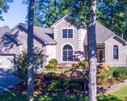 835 Kahite Trail, Vonore image