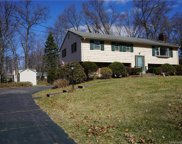 255 Redwood Road, Manchester image