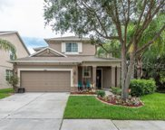 5810 Tulip Flower Drive, Riverview image