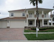 11830 Newberry Grove Loop, Riverview image