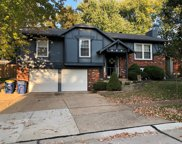 1348 Weatherby  Drive, St Louis image