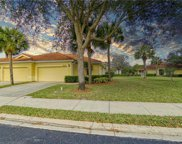 10520 Diamante WAY, Fort Myers image