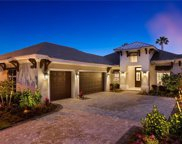 6818 Mangrove Ave, Naples image