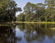 320 PANTHER CHASE TRL, Ponte Vedra Beach image
