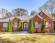 305 Patches Ln, Pell City image