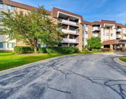 3300 North Carriageway Drive Unit 306, Arlington Heights image
