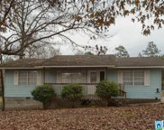 1796 Deer Trace Rd, Pell City image