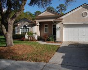 16917 Harrierridge Place, Lithia image