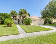 840 Black Bird, Rockledge image