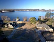 3 Signal Point Road, Guntersville image