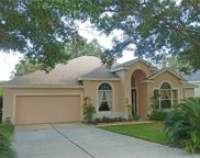1364 Branch Hill Court, Apopka image