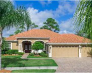 1159 Eagles Flight Way, North Port image