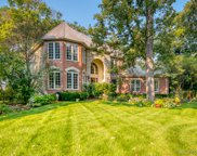 215 Crooked Tree Court, Naperville image