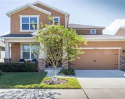 5810 Great Lawn Place, Lithia image