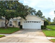 11633 Holly Ann Drive, New Port Richey image
