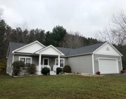 7944 Red Pine Trail, Alanson image