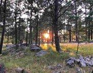 12100 Laramie Trail, Custer image