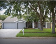 4408 Winding River Drive, Valrico image