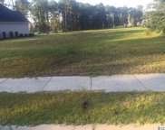 1809 Wood Stork Dr., Conway image