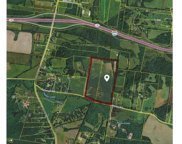 8250 Patterson Rd, College Grove image
