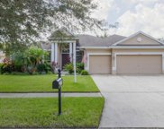 5420 Winhawk Way, Lutz image