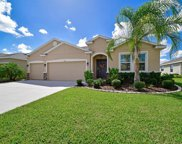 15514 Trinity Fall Way, Bradenton image