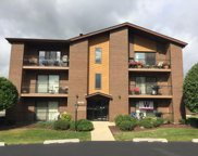 15730 Revere Court Unit F, Oak Forest image